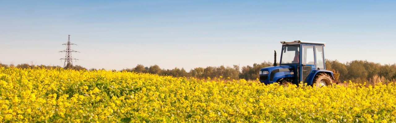 Agriculture Funding: What's Out There?